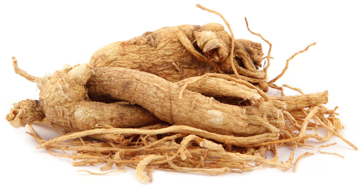 panic ginseng ed treatment